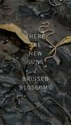 KRN_LCE-PoetryBook-Cover-300dpi.jpg