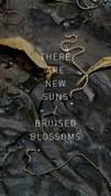 KRN_LCE-PoetryBook-Cover-1020px.jpg